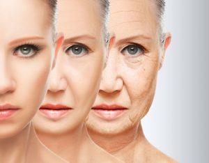 DHEA et vieillissement